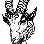 logo-vvdesteinderbok
